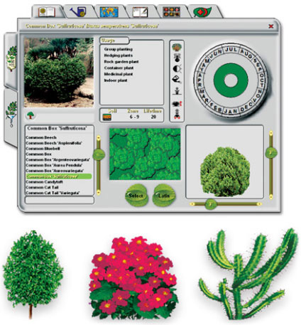 Cottage gardens blueberry flower bed design software for Garden maker online