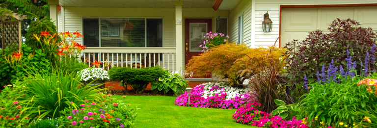 garden design with home design software hgtv software with rock landscape ideas from